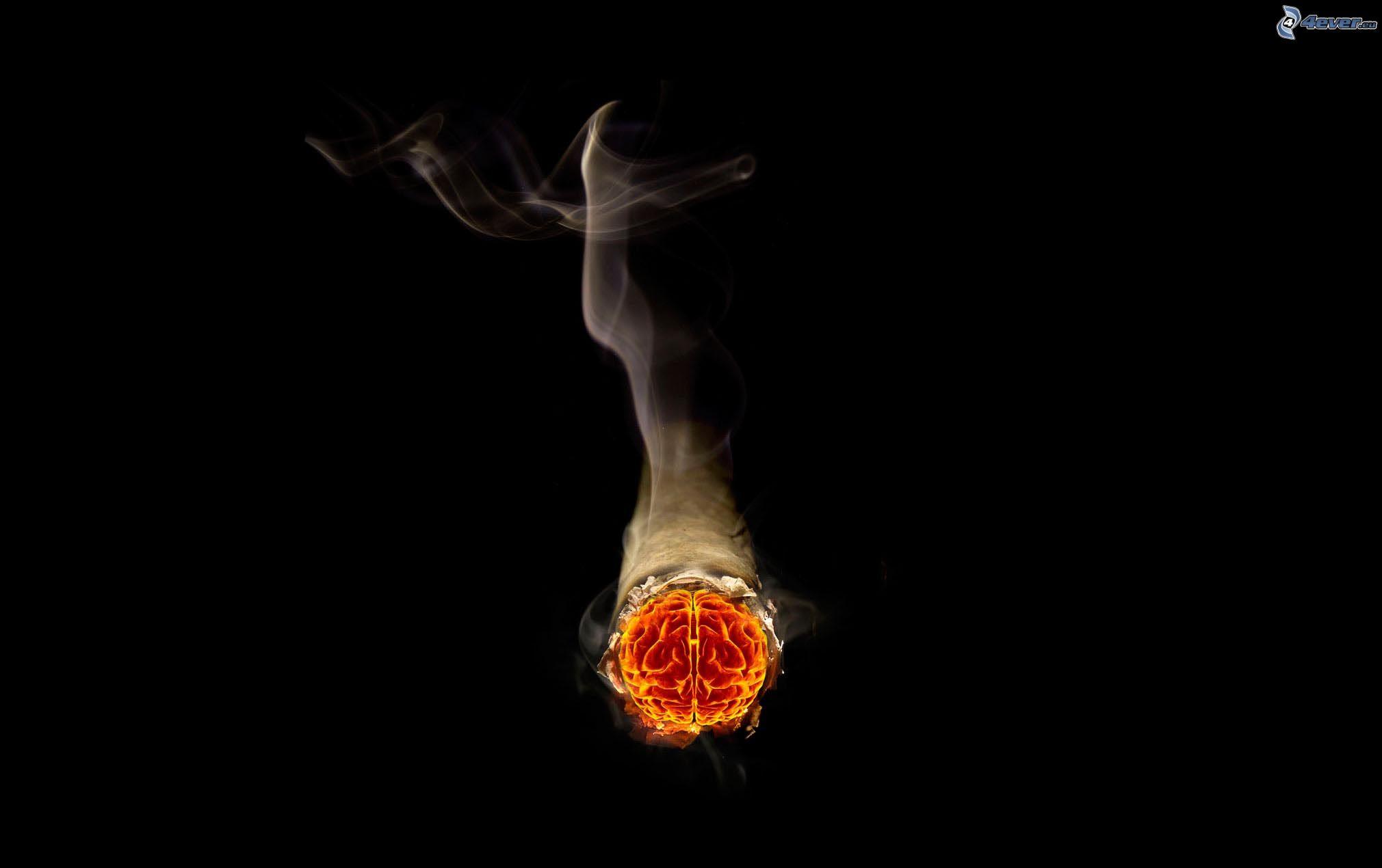 boule de feu wallpaper - photo #11