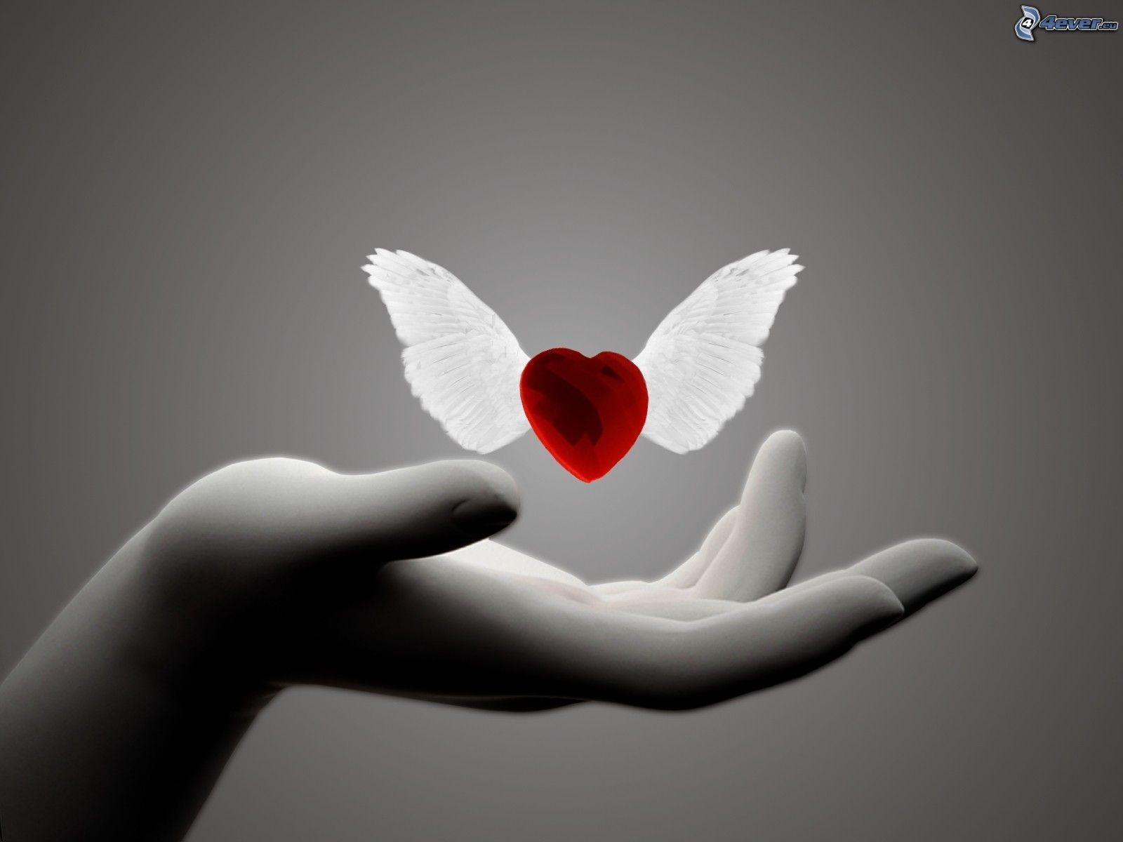 C ur avec des ailes - Dessin de coeur avec des ailes ...