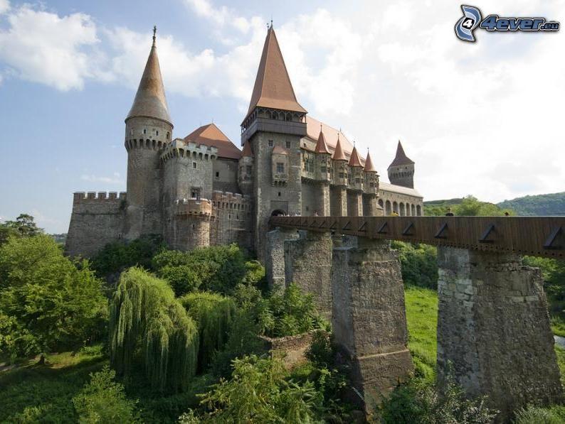 Bien connu Château de Dracula DO63