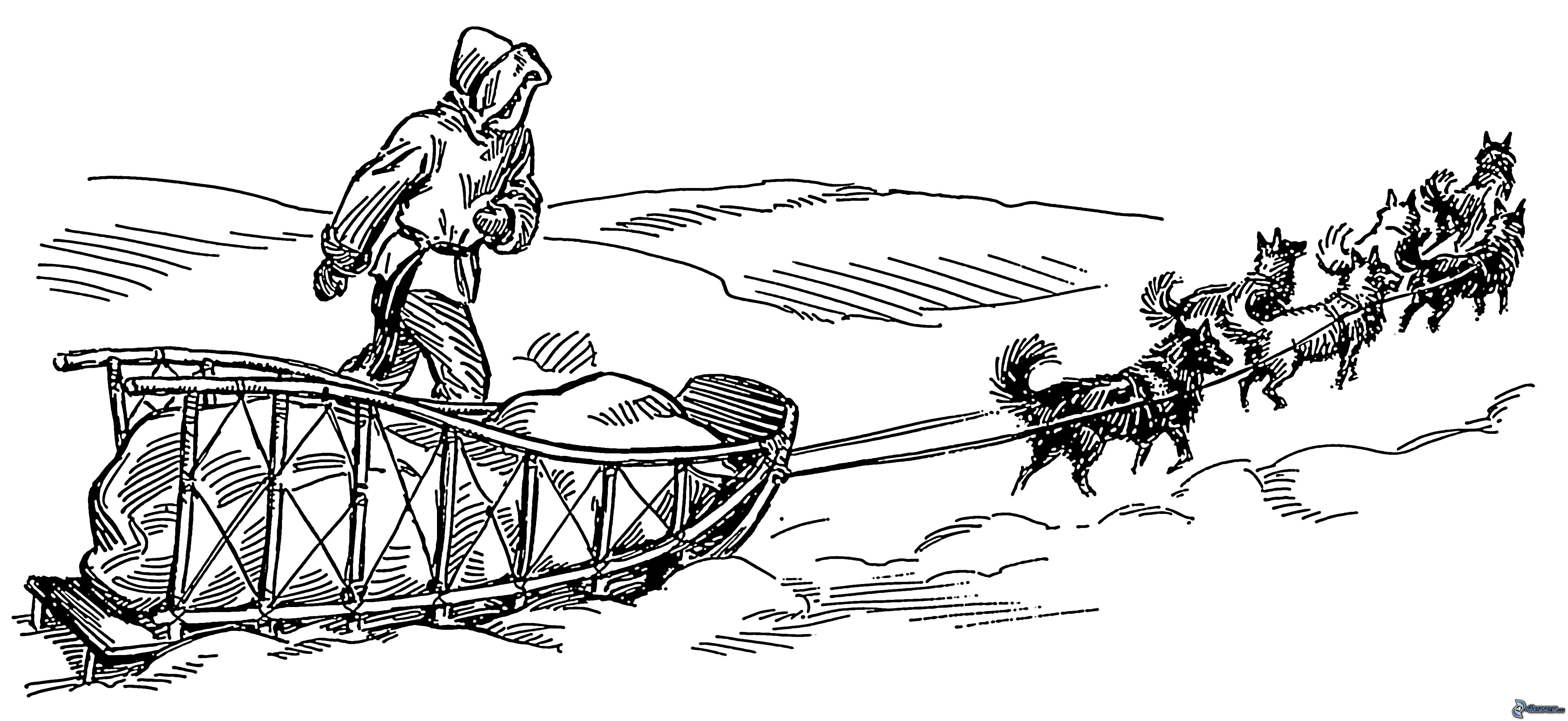 Free coloring pages of inuit sled dogs for Iditarod coloring pages