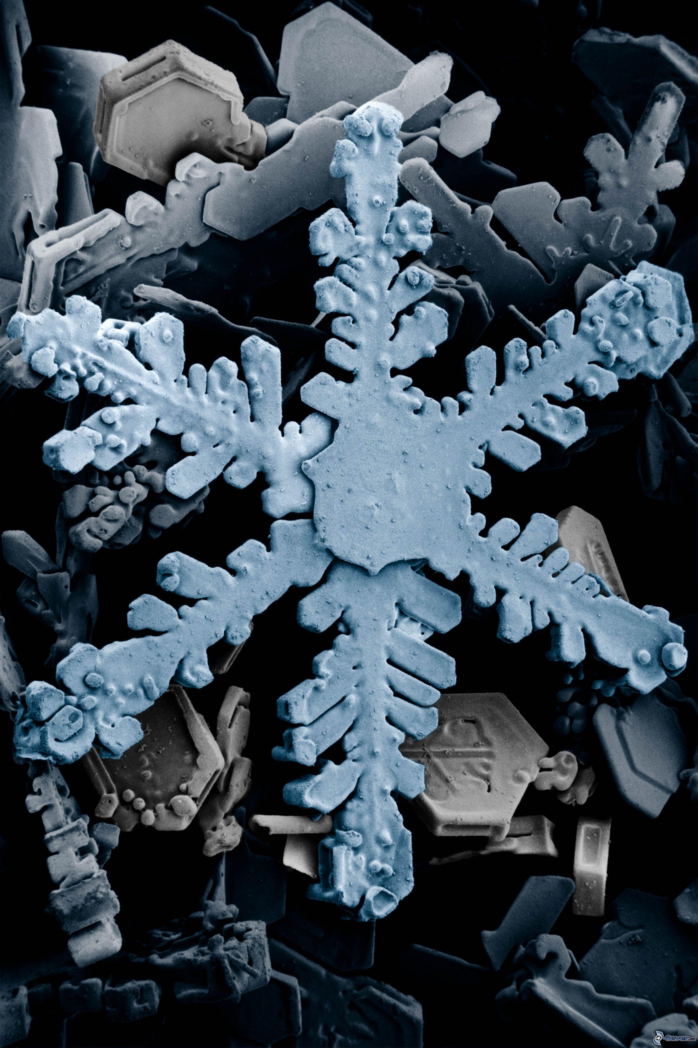 Flocon de neige - Gabarit flocon de neige a decouper ...