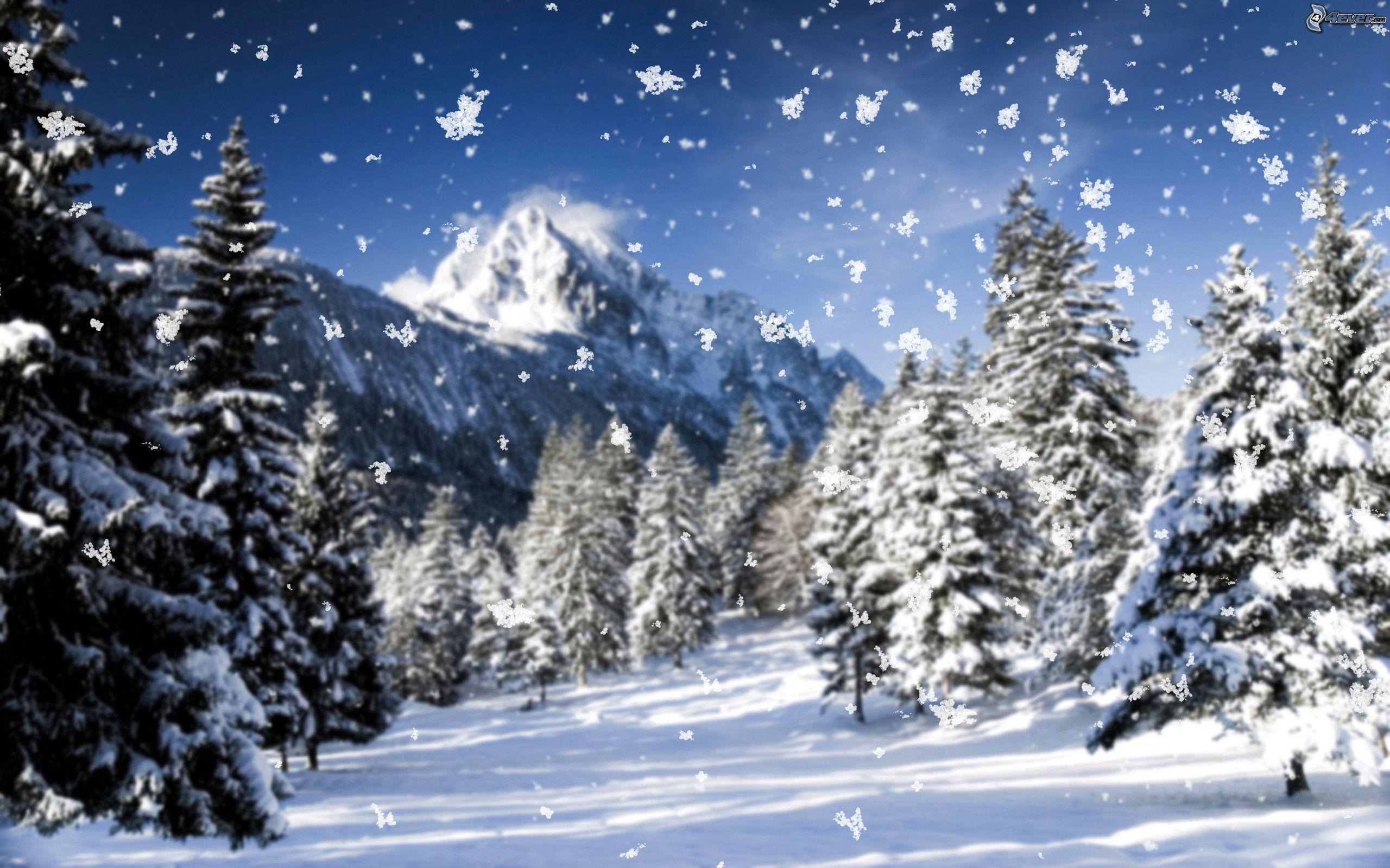 Paysage enneig for Fenetre nevada
