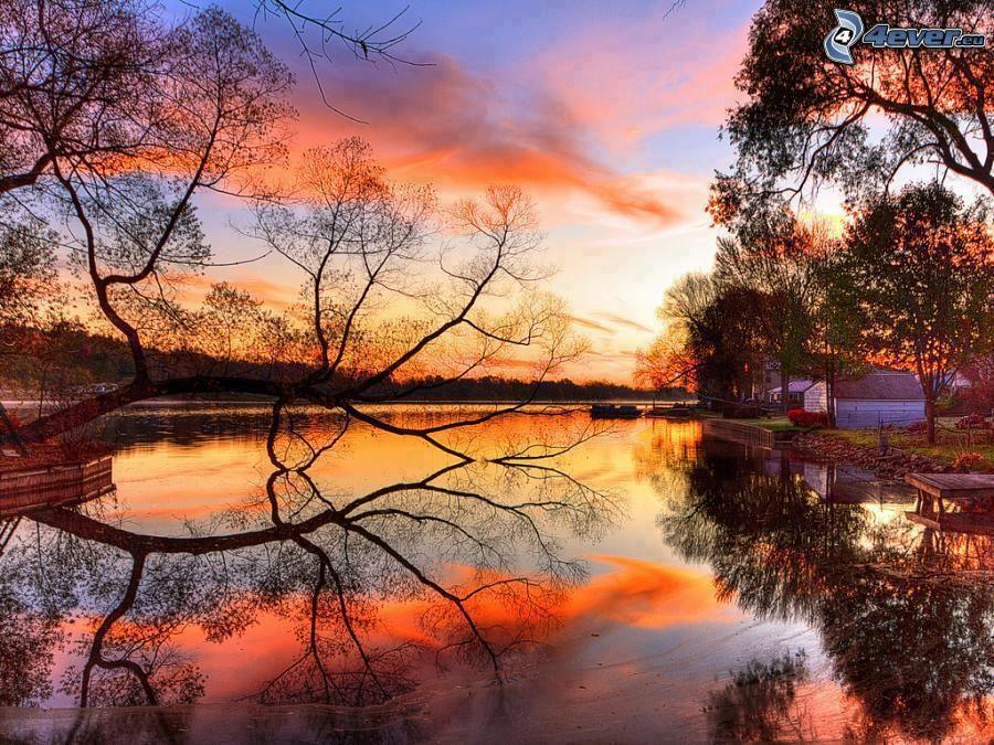 lac-calme-du-soir,-arbre-au- ...
