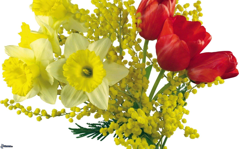 Bouquet for Bouquet de fleurs jaunes