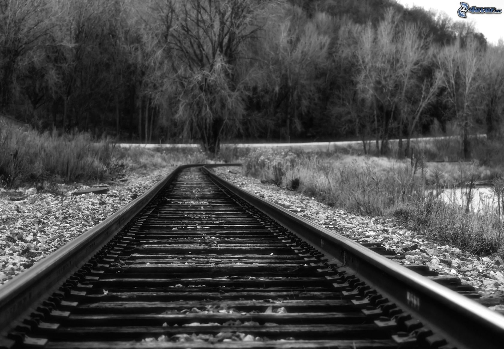 Rails - Tapisserie rayee noir et blanc ...