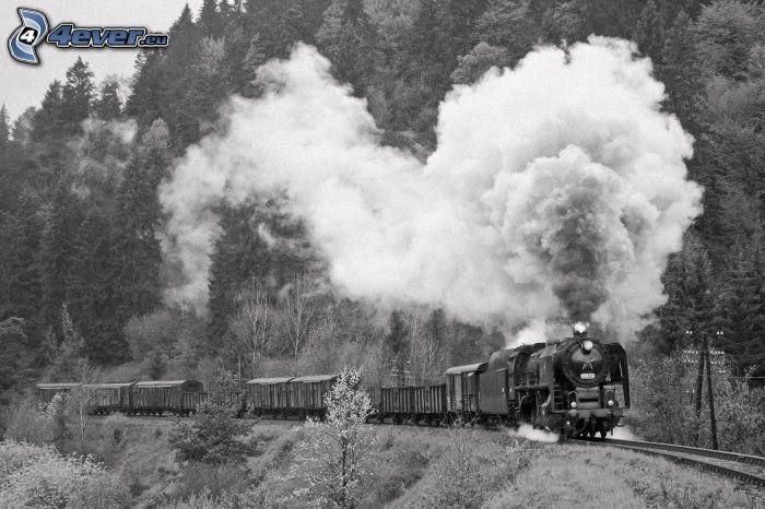 Train vapeur - Nettoyeurs de sols et vapeur ...